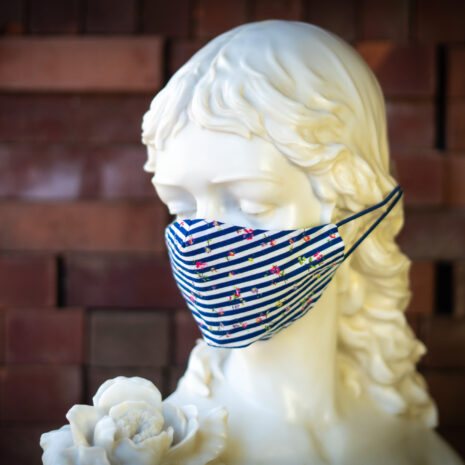 Nautical Stripes Face Mask 1